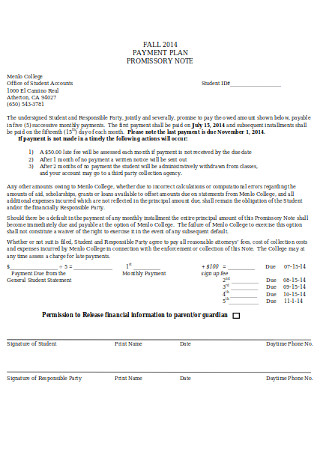 Payment Plan Promissory Note