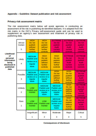 Privacy Risk Assessment Matrix
