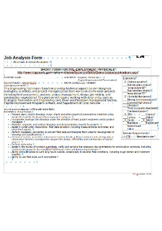 Professional Job Analysis Form