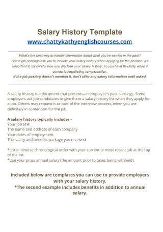 Professional Salary History Template