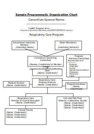 Programmatic Organization Chart