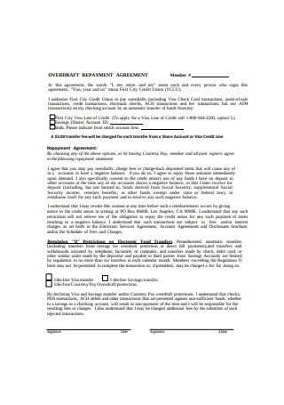 Repayment Agreement Example