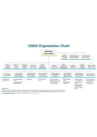 Sample Complex Organizational Chart