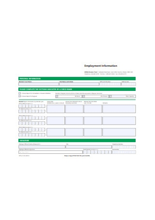Sample Employment Information Form Example