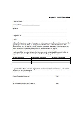 Sample Payment Plan Agreement
