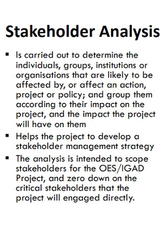 Sample Project Stakeholder Analysis