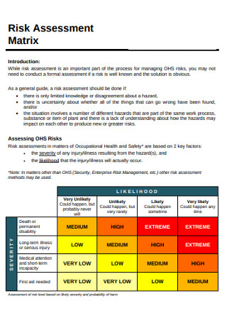 Sample Risk Assessment Matrix
