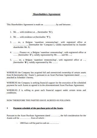Sample Shareholders Agreement
