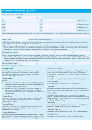 Shareholders' Cross Option Agreement