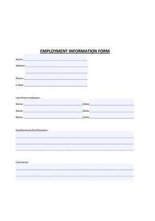 Simple Employment Information Form Example