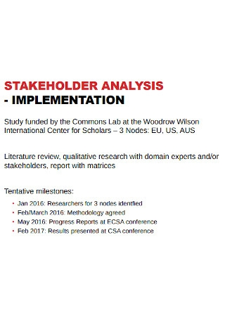 Stakeholder Analysis Implementation