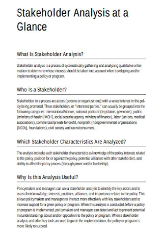 Stakeholder Analysis at Glance