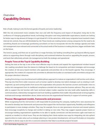 Strategic Risk Management Consulting Report