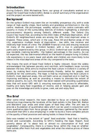 Student Consultancy Report