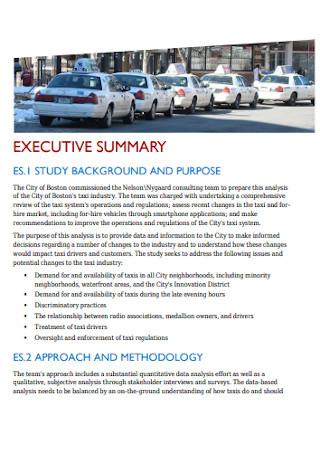 Taxi Consultant Report