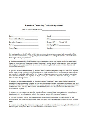Transfer of Ownership Agreement