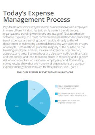 Travel Expense Management Report