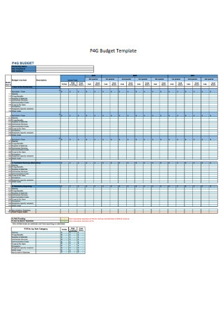 Workplan and Budget Template