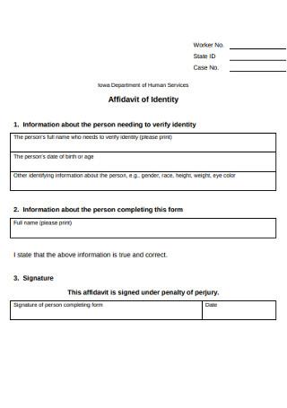 Affidavit of Identity Human Service Form