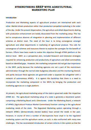 Agriculture Marketing Plan