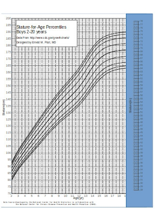 BMI Growth Chart for Ages