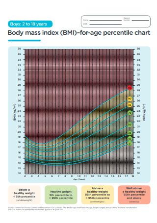 BMI for Age Percentile Chart
