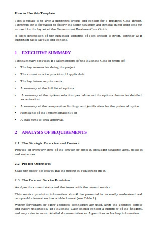 Business Case Report Template