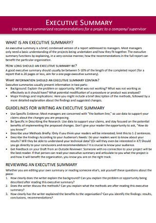 Company Excutive Summary