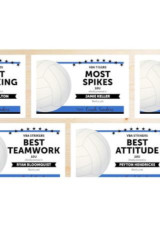 Editable Volleyball Award Certificate