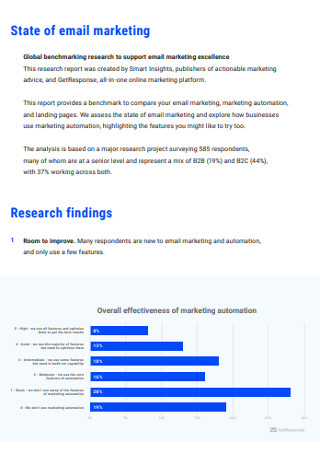 Email Marketing and Marketing Automation Report Sample