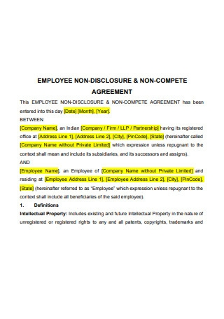 Employee Non Disclosure Non Compete Agreement