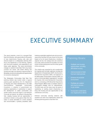 Excutive Planing Summary