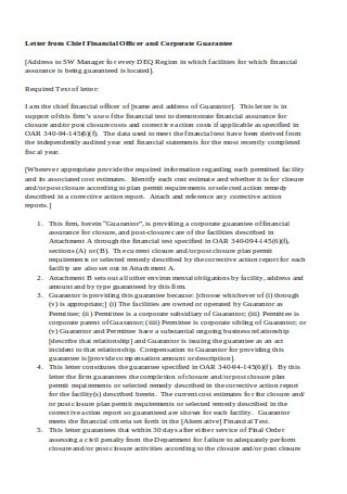 Financial Guarantee Letter Example