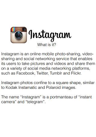 Instagram Marketing Presentation Sample