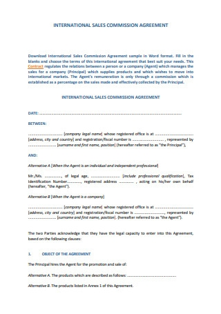 International Sales Commission Agreement Template