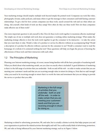 Internet Marketing Strategy Development Sample