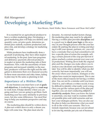 Marketing Risk Management Plan