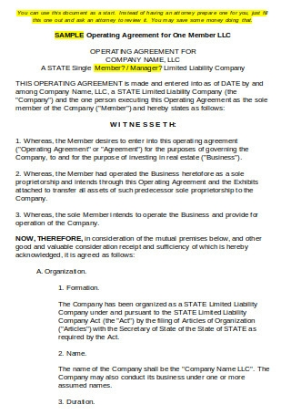 Operating Agreement for One Member LLC