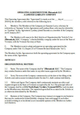 Operating Agreement in DOC