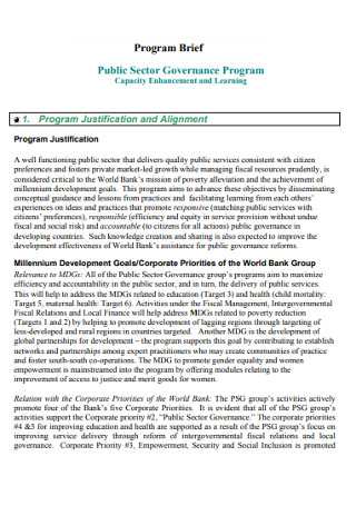Program Brief Template