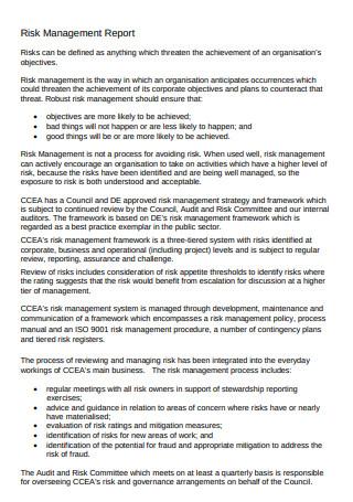 Risk Management Report Format