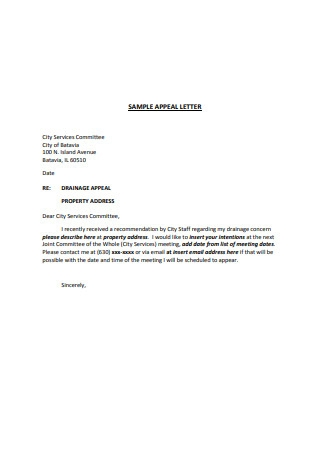 Sample Appeal Letter Example