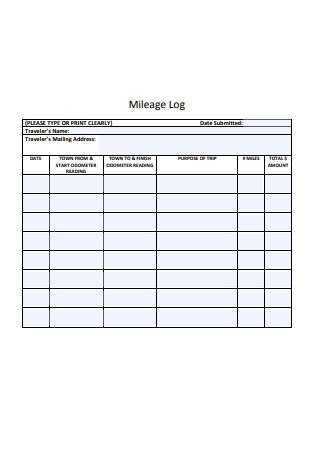 Standard Mileage Log Format