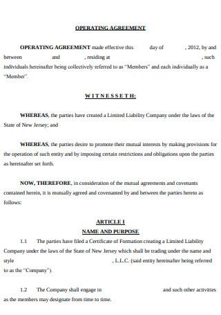 Standard Operating Agreement
