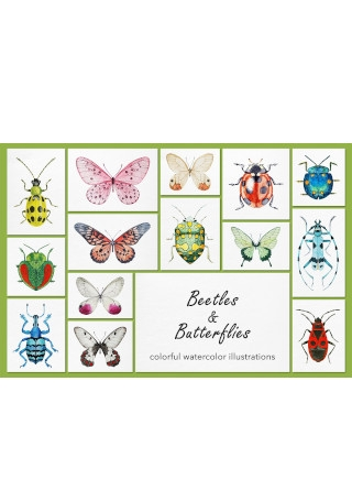Beetles Butterflies