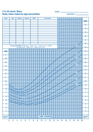 Boys BMI for age Percentiles Chart Template