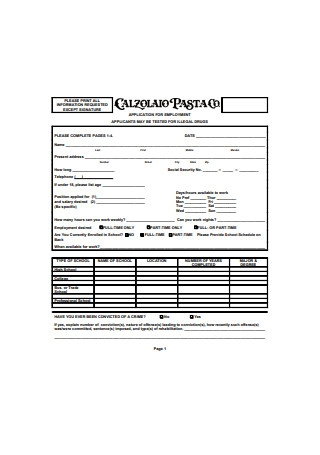 Employment Application Form Sample