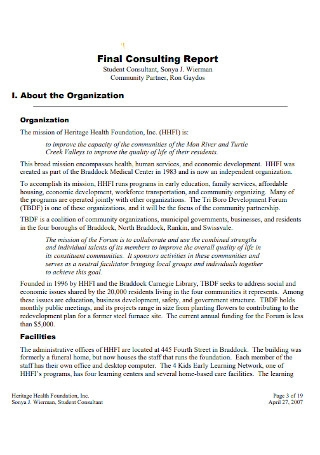 Final Consulting Report