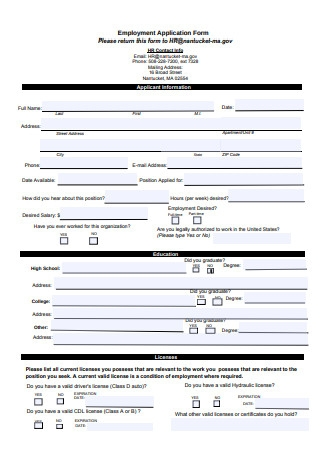 Formal Employment Application Form Sample