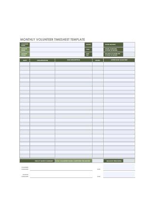 Monthly Volunteer Timesheet